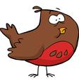 brown bird vector image
