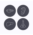 Lab bulb medical mirror and liver organ icons vector image