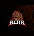 bear mascot sport logo design vector image
