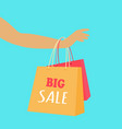big sale concept in flat design vector image vector image
