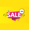 big sale design special offer poster template vector image