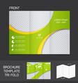 Brochure template tri fold vector image vector image