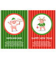 cartoon pig in green hat and in santa claus beard vector image vector image