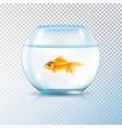 golden fish bowl realistic transparent vector image vector image