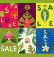 tropical plants cards set vector image