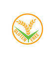 gluten free label sign vector image
