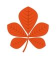 autumn leafs decoration season icon vector image