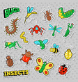 bugs and insects patches stickers badges vector image vector image