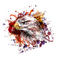 color of an eagle head vector image vector image