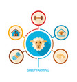 Sheep farming icon and agriculture infographics vector image