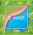 tp view beach background with palm leaves and vector image vector image
