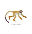 wild squirrel monkey isolated animal cartoon vector image