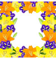 yellow orange lily and blue iris flower border on vector image