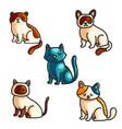 Cats color hand drawn set