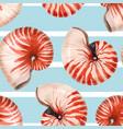 watercolor sea life nautilus shell pattern vector image