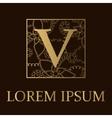 Background with V letter golden vector image