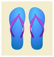 blue flip-flops vector image