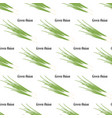 green onion seamless pattern vector image vector image