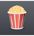 Realistic Popcorn Fast Food Icon Retro Cartoon vector image vector image