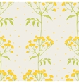 Tansy flowers pattern vector image