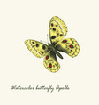 watercolor butterfly parnassius apollo butterfly vector image vector image