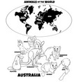 educational australian animals color book vector image vector image