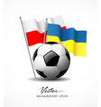 European Football 2012 vector image vector image