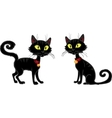 Halloween terrible Black Cat vector image vector image