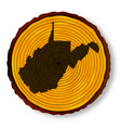 west virginia map on timber vector image vector image
