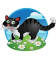 Black fun cat on color background vector image vector image