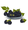 Blackberries in a glass bowl vector image