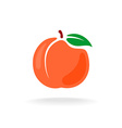 Cartoon style color isolated peach fruit vector image vector image