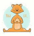 cute cartoon cat standing in yoga pose namaste vector image