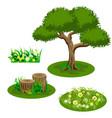 garden landscape set for summer forest or garden vector image