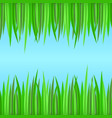 seamless borders with realistic grass element for vector image vector image