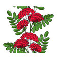 seamless pattern red rowan tree endless ornament vector image vector image