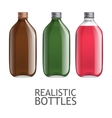 Template of glass bottles vector image vector image