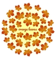 Whirlwind of orange leaves on white background vector image vector image