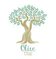 Olive tree Olive oil olive tree for labels pack vector image vector image