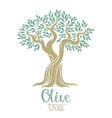 Olive tree Olive oil olive tree for labels pack