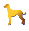 silhouette of gold dog isolated on white vector image