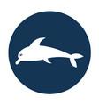 cute dolphin silhouette icon vector image