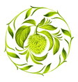 decorative circle soursop with leaves vector image vector image