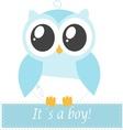 Its a boy owl vector image