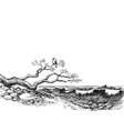 sea shore wild beach waves vector image