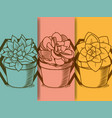 succulent in pot hand drawing vector image