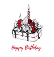 cake with a candle birthday vector image