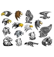 Cartoon eagle falcon and hawk heads vector image vector image