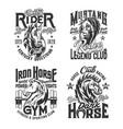 horse stallion mascot t-shirt print vector image