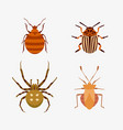 insect icon flat isolated nature flying bug beetle vector image